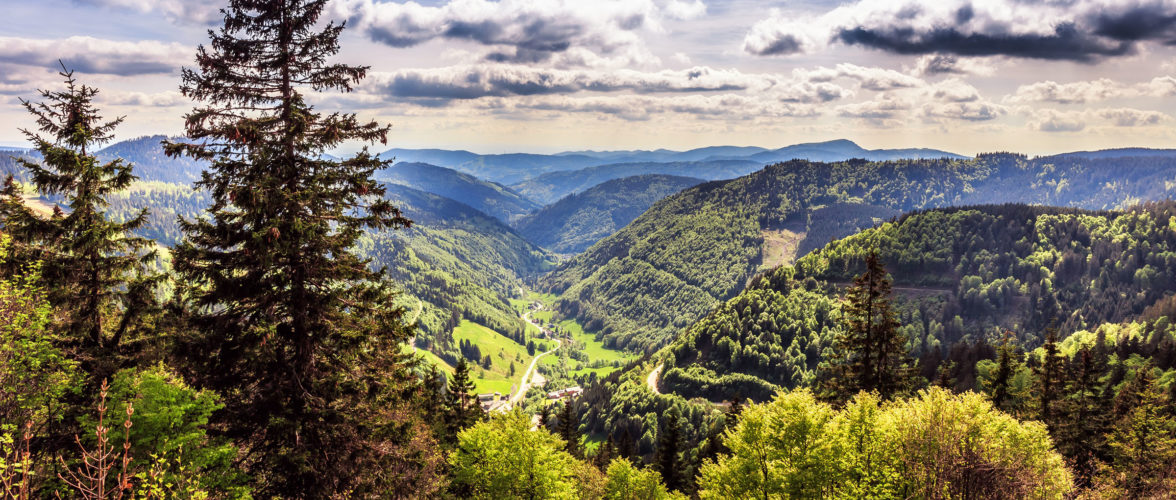 Aussicht Schwarzwald