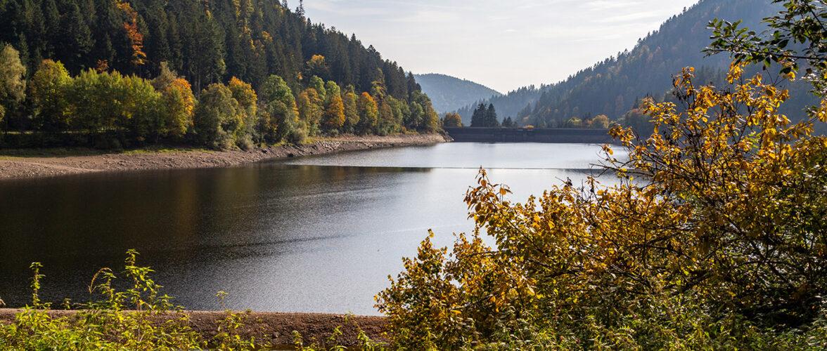 Tagesfahrt-2020 Albstausee Schwarzwald